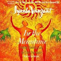 In The Meantime - Iyanla Vanzant - audiobook