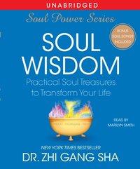 Soul Wisdom - Zhi Gang Sha - audiobook