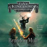 Rogue Knight - Brandon Mull - audiobook