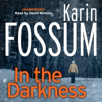 In the Darkness - Karin Fossum - audiobook