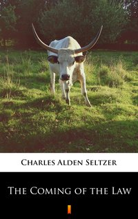 The Coming of the Law - Charles Alden Seltzer - ebook
