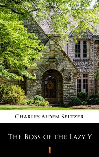 The Boss of the Lazy Y - Charles Alden Seltzer - ebook