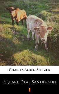 Square Deal Sanderson - Charles Alden Seltzer - ebook