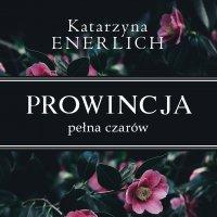 Prowincja pełna czarów - Katarzyna Enerlich - audiobook