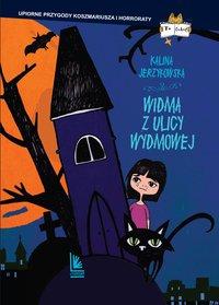 Widma z ulicy Wydmowej - Kalina Jerzykowska - ebook