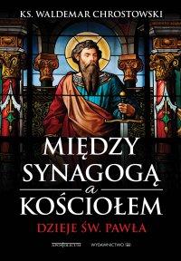 Między Synagogą i Kościołem. Dzieje św. Pawła - prof. Waldemar Chrostowski - ebook