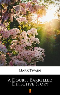 A Double Barrelled Detective Story - Mark Twain - ebook
