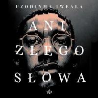 Ani złego słowa - Uzodinma Iweala - audiobook
