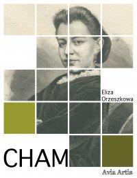 Cham - Eliza Orzeszkowa - ebook