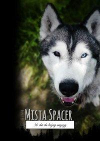Misja Spacer - Anna Brożek - ebook