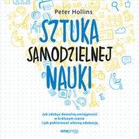 Sztuka samodzielnej nauki. Jak zdobyć dowolną umiejętność w krótszym czasie i jak pokierować własną edukacją - Peter Hollins - audiobook