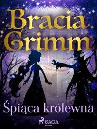Śpiąca królewna - Bracia Grimm - ebook