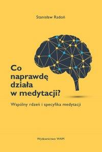 Co naprawdę działa w medytacji? - ks. Stanisław Radoń - ebook
