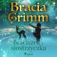 Braciszek i siostrzyczka - Bracia Grimm - audiobook