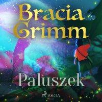 Paluszek - Bracia Grimm - audiobook