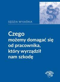 Czego możemy domagać się od pracownika, który wyrządził nam szkodę - Rafał Krawczyk - ebook