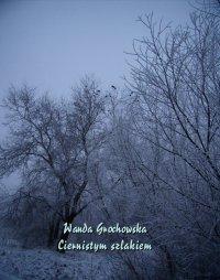Ciernistym szlakiem. Opowiadanie z czasów prześladowania Unii - Wanda Grochowska - ebook