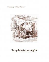 Trzydzieści morgów - Wincenty Kosiakiewicz - ebook