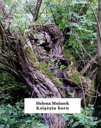Książęta boru - Helena Mniszek - ebook