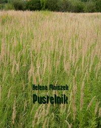 Pustelnik - Helena Mniszek - ebook