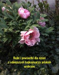 Bajki i powiastki dla dzieci z celniejszych bajkopisarzy polskich wybrane - Antologia - ebook