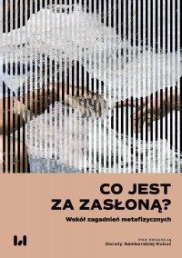 Co jest za zasłoną? Wokół zagadnień metafizycznych - Dorota Samborska-Kukuć - ebook