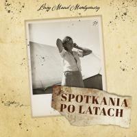 Spotkania po latach - Lucy Maud Montgomery - audiobook