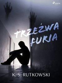 Trzeźwa furia - K. S. Rutkowski - ebook