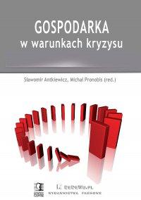 Gospodarka w warunkach kryzysu - Sławomir Antkiewicz - ebook