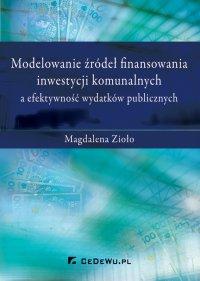 Modelowanie źródeł finansowania inwestycji komunalnych a efektywność wydatków publicznych - Magdalena Zioło - ebook