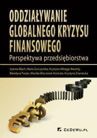 Oddziaływanie globalnego kryzysu finansowego. Perspektywa przedsiębiorstwa - Joanna Błach - ebook
