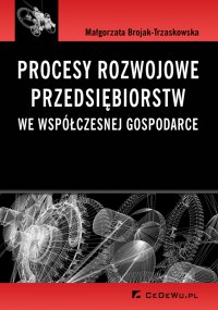 Procesy rozwojowe przedsiębiorstw we współczesnej gospodarce - Małgorzata Brojak-Trzaskowska - ebook