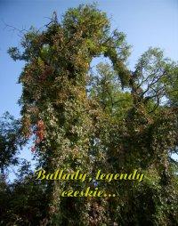 Ballady, legendy czeskie... - Antologia - ebook