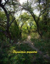 Objawienia prywatne - Antologia - ebook