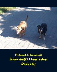 Drobnoludki i inne dziwy. Rudy zbój - Ferdynand A. Ossendowski - ebook