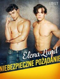 Niebezpieczne pożądanie - Elena Lund - ebook