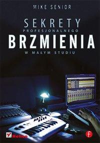 Sekrety profesjonalnego brzmienia w małym studiu - Mike Senior - ebook