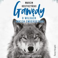 Gawędy o wilkach i innych zwierzętach - Marcin Kostrzyński - audiobook