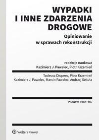 Wypadki i inne zdarzenia drogowe. Opiniowanie w sprawach rekonstrukcji - Piotr Krzemień - ebook