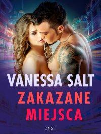 Zakazane miejsca - pięć gorących opowiadań erotycznych - Vanessa Salt - ebook
