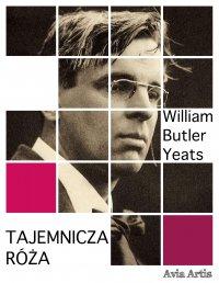 Tajemnicza róża - William Butler Yeats - ebook