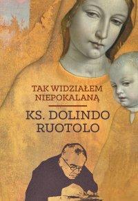 Tak widziałem Niepokalaną - Ks. Dolindo Ruotolo - ebook