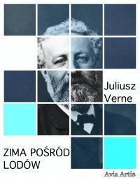 Zima pośród lodów - Juliusz Verne - ebook