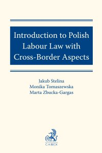 Introduction to Polish Labour Law with Cross-Border Aspects - Jakub Stelina - ebook