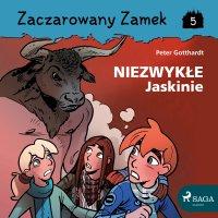 Zaczarowany Zamek 5 - Niezwykłe Jaskinie - Peter Gotthardt - audiobook