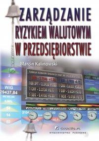 Zarządzanie ryzykiem walutowym w przedsiębiorstwie - Marcin Kalinowski - ebook