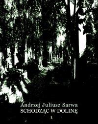Schodząc w dolinę - Andrzej Juliusz Sarwa - ebook