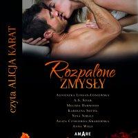 Rozpalone zmysły - Agnieszka Lingas-Łoniewska - audiobook