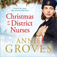 Christmas for the District Nurses (The District Nurse, Book 3) - Annie Groves - audiobook