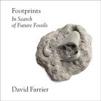 Footprints - David Farrier - audiobook